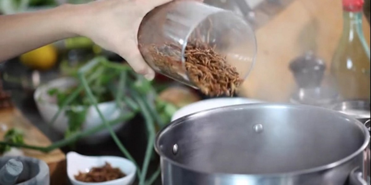 I'm not ready for this insects-for-food Kickstarter campaign