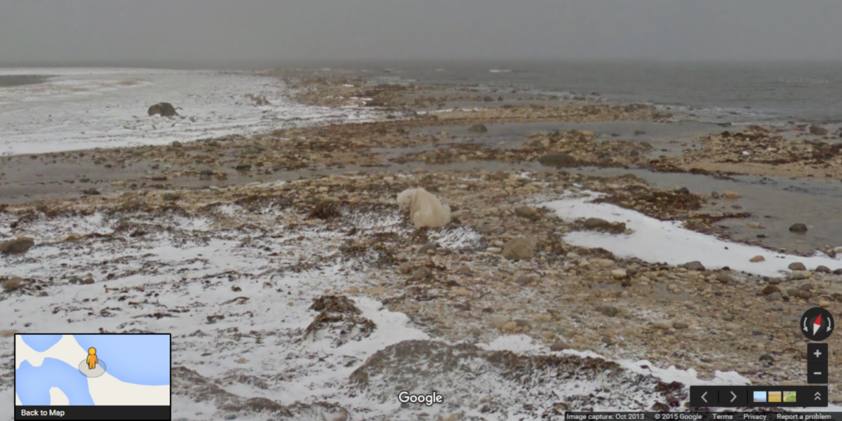 Google Street View shows effects of climate change as UN negotiations start in Paris