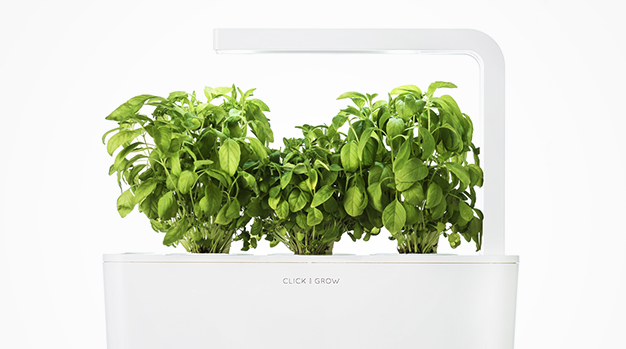 Foolproof green thumb: Smart Herb Garden Starter Kit & 3-pack refill now 24% off