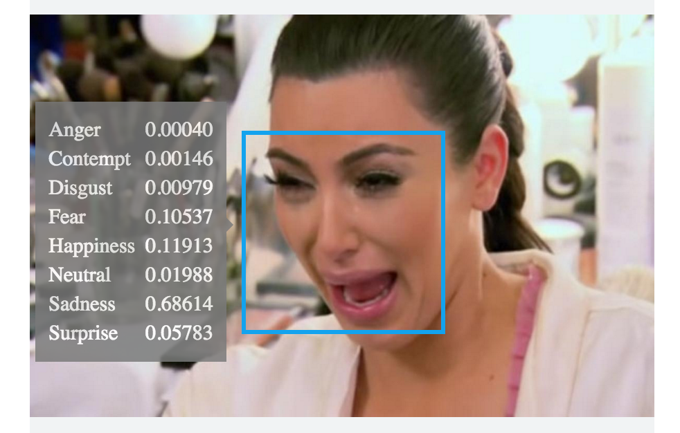 ms kim emotion