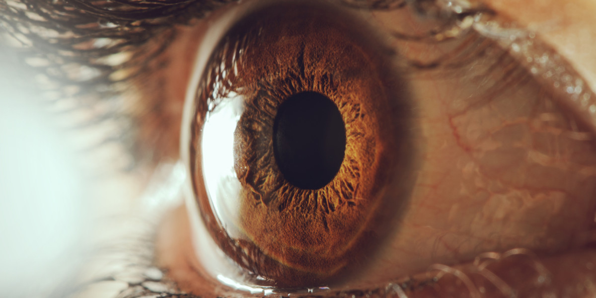 Bionic eye could 'cure' blindness by bypassing retina entirely