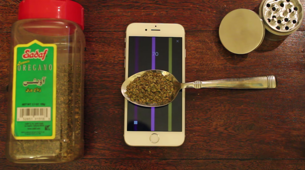 Redditor bypasses Apple guidelines, releases 'Flappy Bird' clone for weighing 'oregano' ...