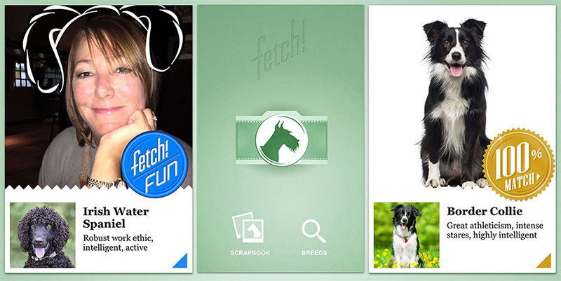 Fetch's iOS app has info on a range of breeds and can also tell you what breed you resemble
