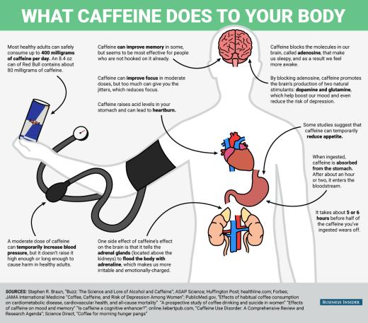 How Our Brains Work On Caffeine