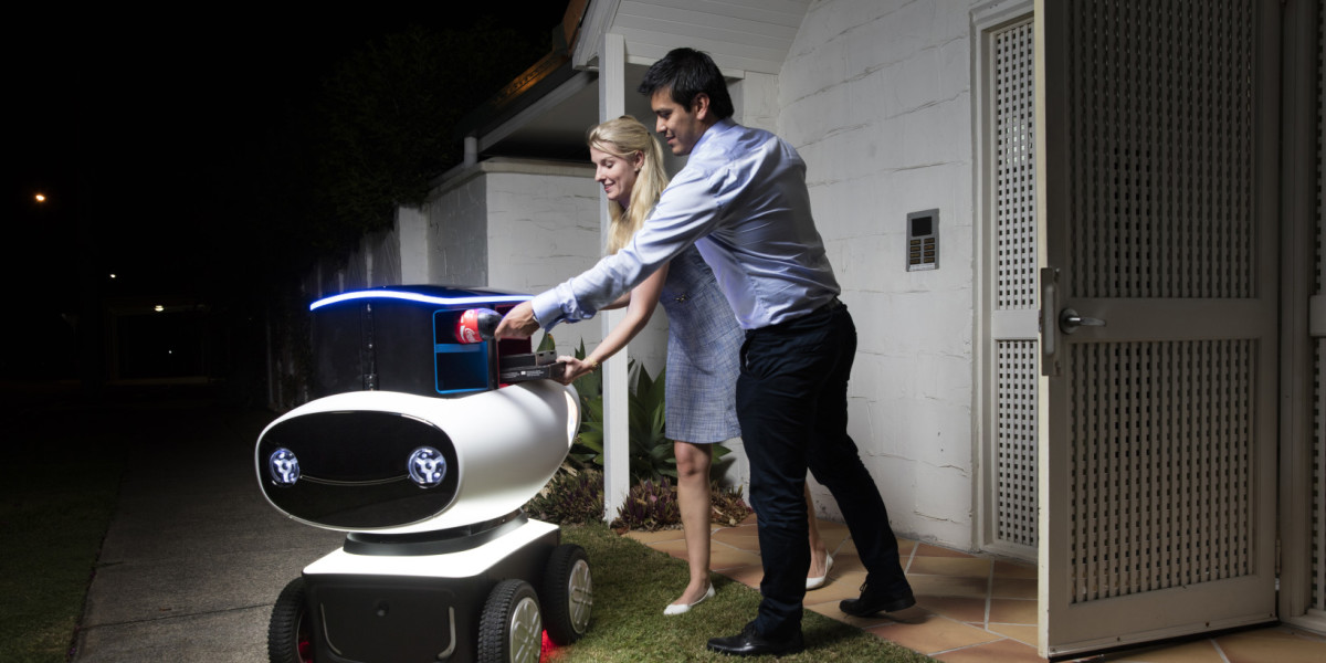 Domino's next pizza delivery guy might be this awkward robot