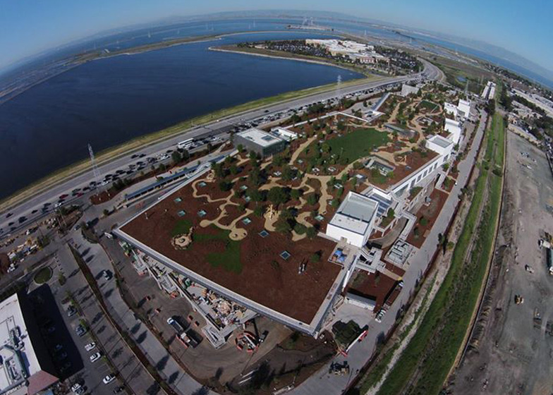 Facebook's shiny new HQ will disappear thanks to global warming