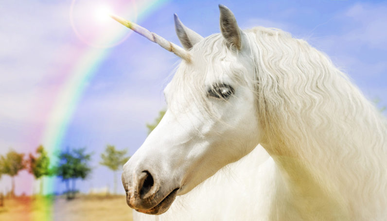 One does not simply wake up a unicorn…