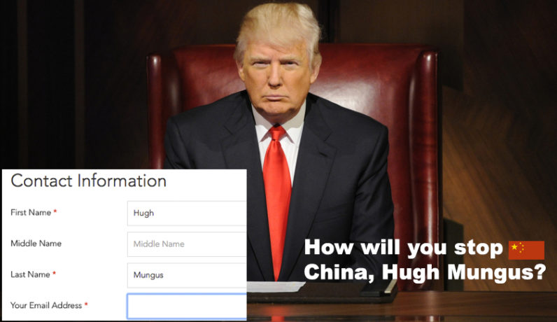donald trump, job application,