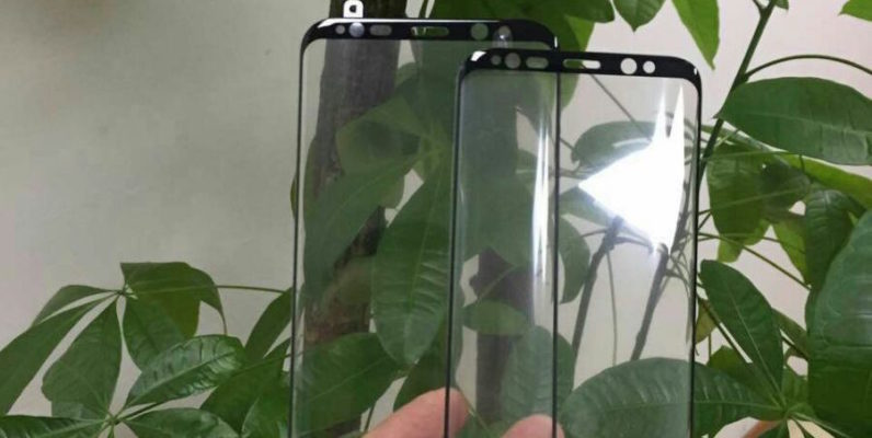 samsung, galaxy s8, screen, leak