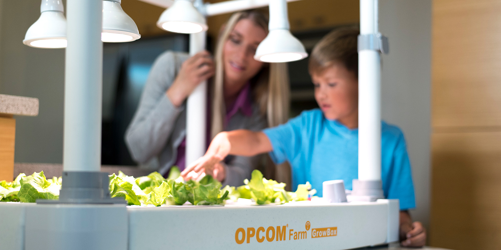 Opcom proves you can grow more than weed with at-home hydroponics