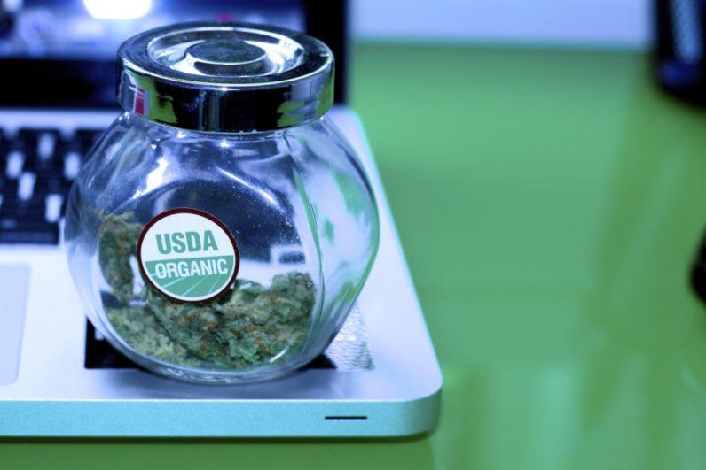 Apple gets High (Sierra), builds a vaporizer