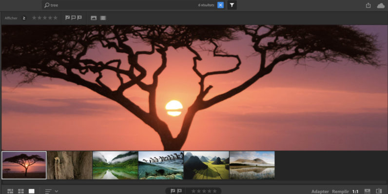 Adobe accidentally leaked its upcoming photo editing app for novices