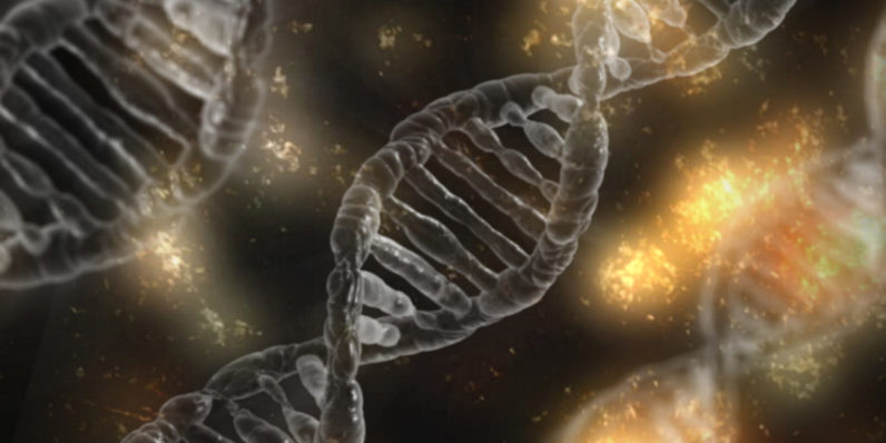 Hack of DNA Website Exposes Data From 92 Million Accounts