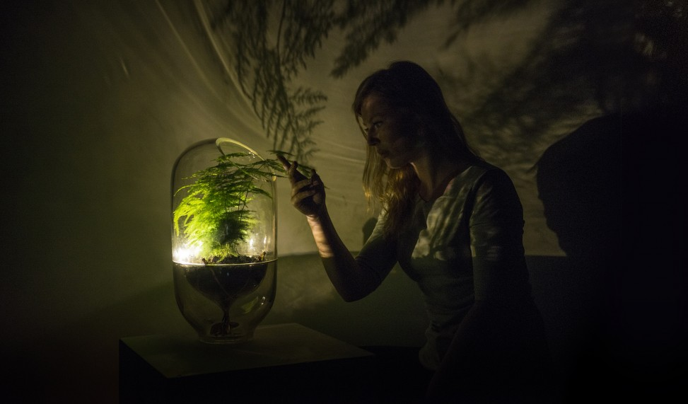 This Dutch Startup Turns Plants into Batteries