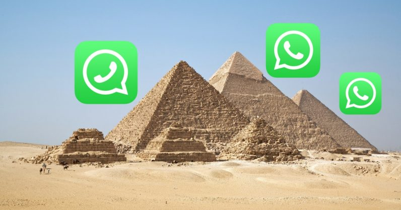 Egypt now has a WhatsApp hotline for reporting fake news