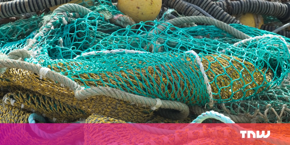 How data scientists are leading the fight against illegal fishing