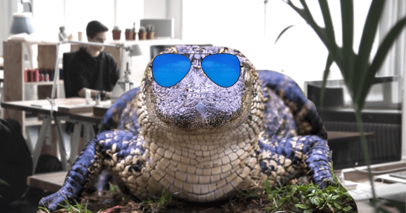 Alligator blood is the key to your startup's success