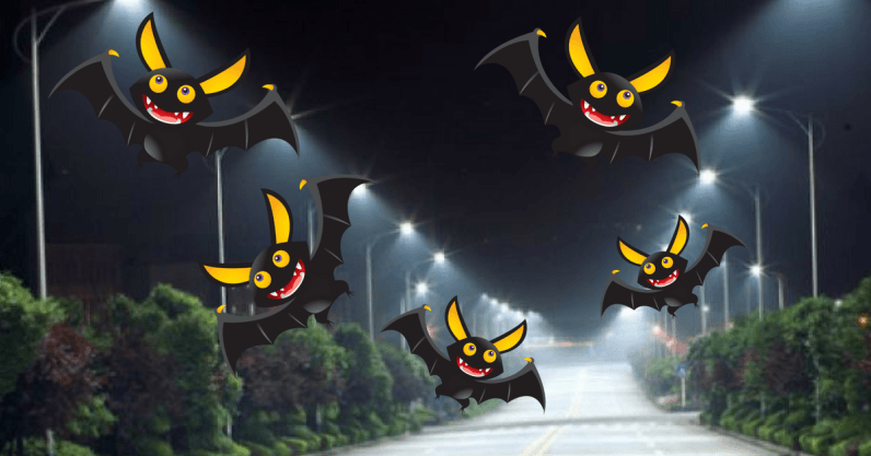 This Dutch town uses high-tech streetlights to keep its bats happy