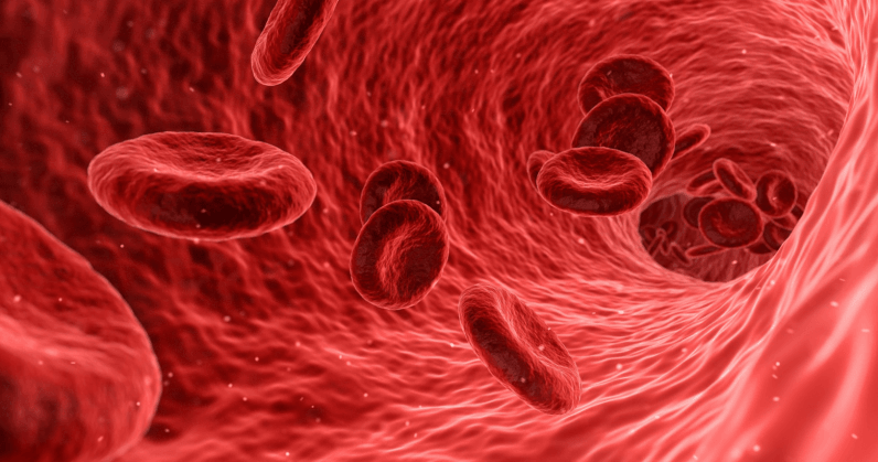 Blood for universal transfusions might be sourced from gut bacteria