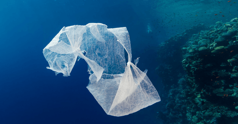 Putting more plastic in the ocean might actually be a good thing