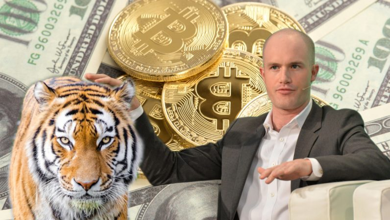 armstrong coinbase cryptocurrency tiger global investment 8 billion 796x448 - Coinbase's latest funding deal makes it an $8B company