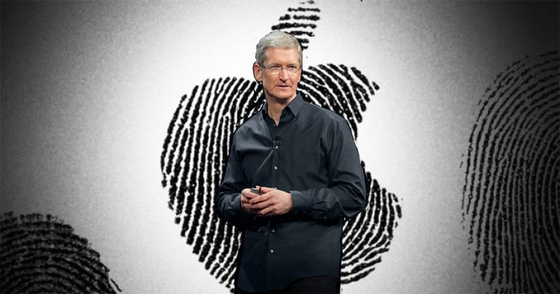 Is Tim Cook the champion of privacy?