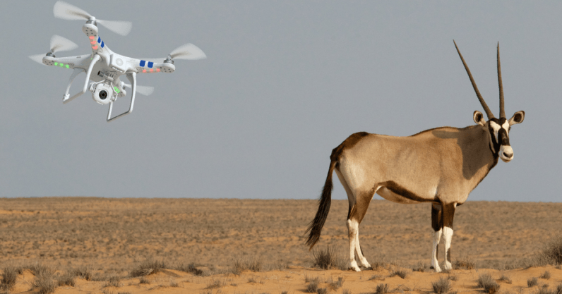 Niger will use drones to protect almost extinct antelope species