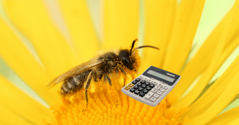 Image result for Science says bees can learn maths