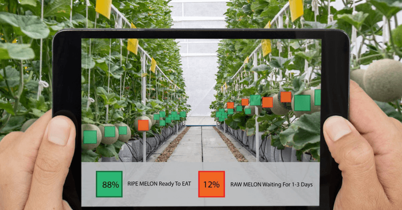 The digital farming revolution will cost workers their power, dignity, and possibly their jobs
