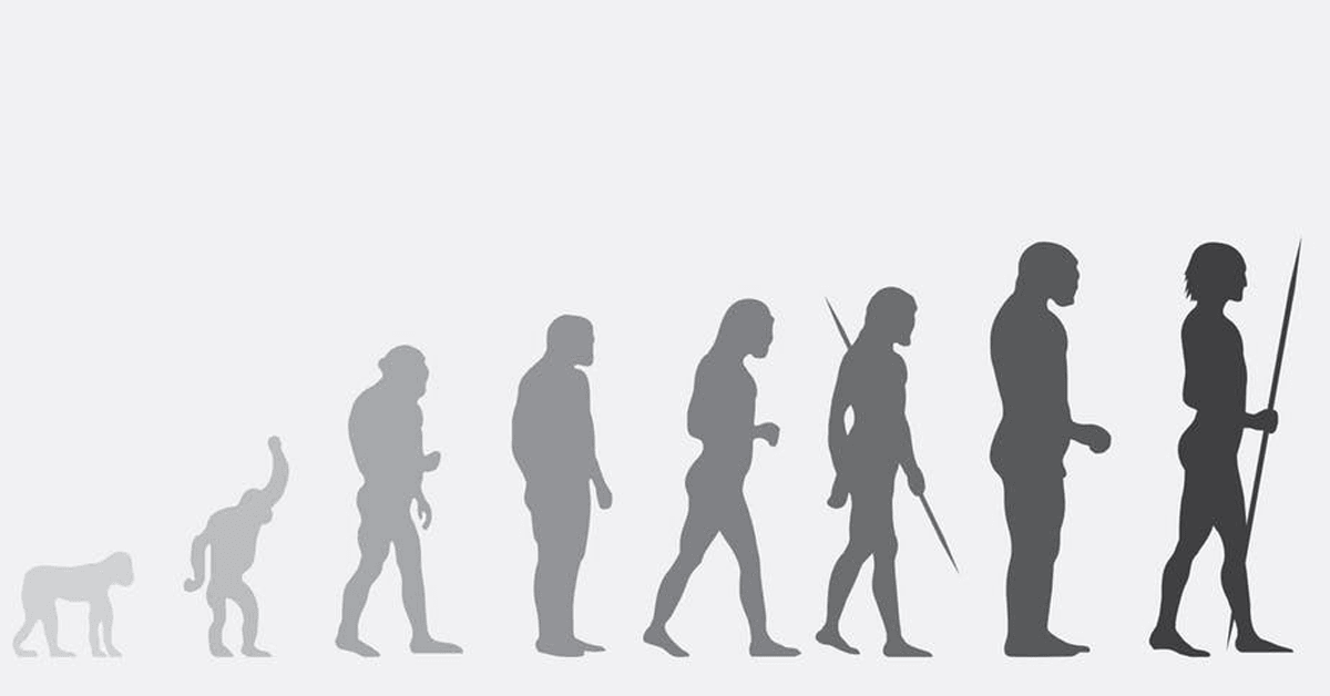 Geneticist: it's time we stop human evolution