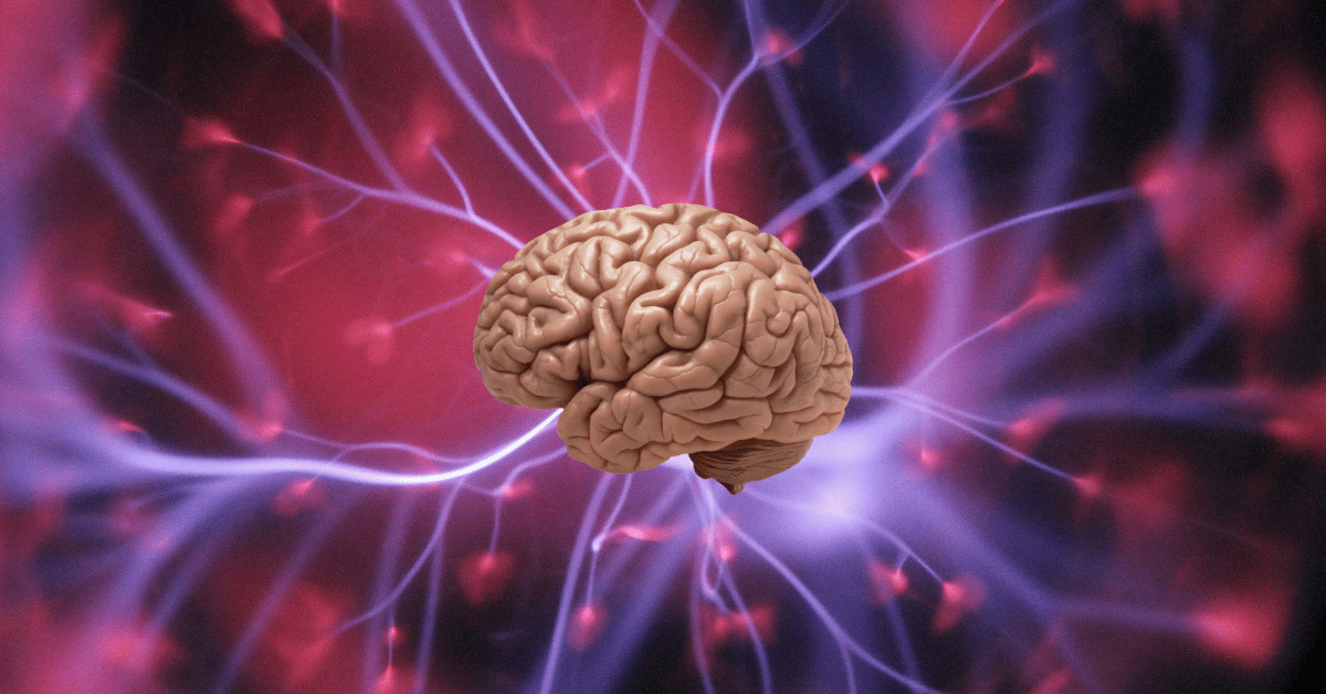 How scientists could one day predict your memories