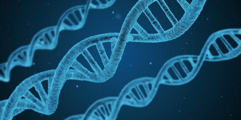 Публичная база данных ДНК привела к обвинению в убийстве, но невинные люди могут заплатить цену