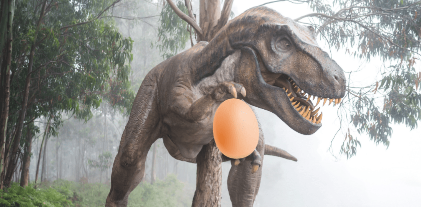 Dinosaur egg bonanza gives vital clues about prehistoric parenting
