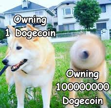 Dogecoin, doge