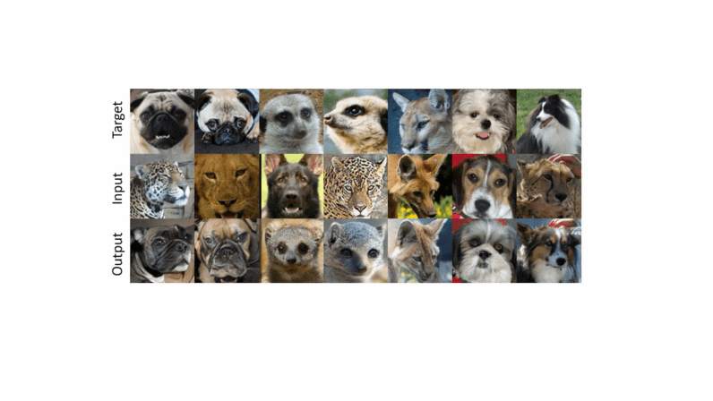 NVIDIA's new AI lets you recreate your pet's smile on a lion