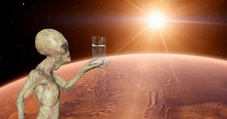 Salty Mars water could hold proof of primitive life - the next web