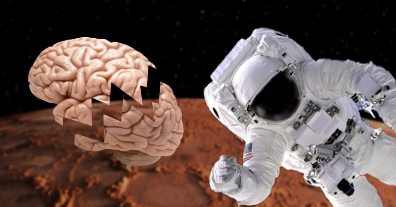 Why zero gravity is bad for our brains