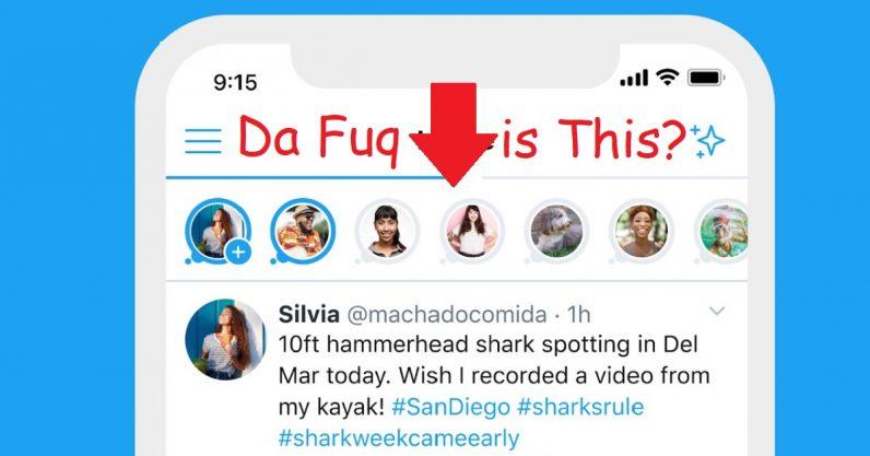 Twitter Fleets Test WTF