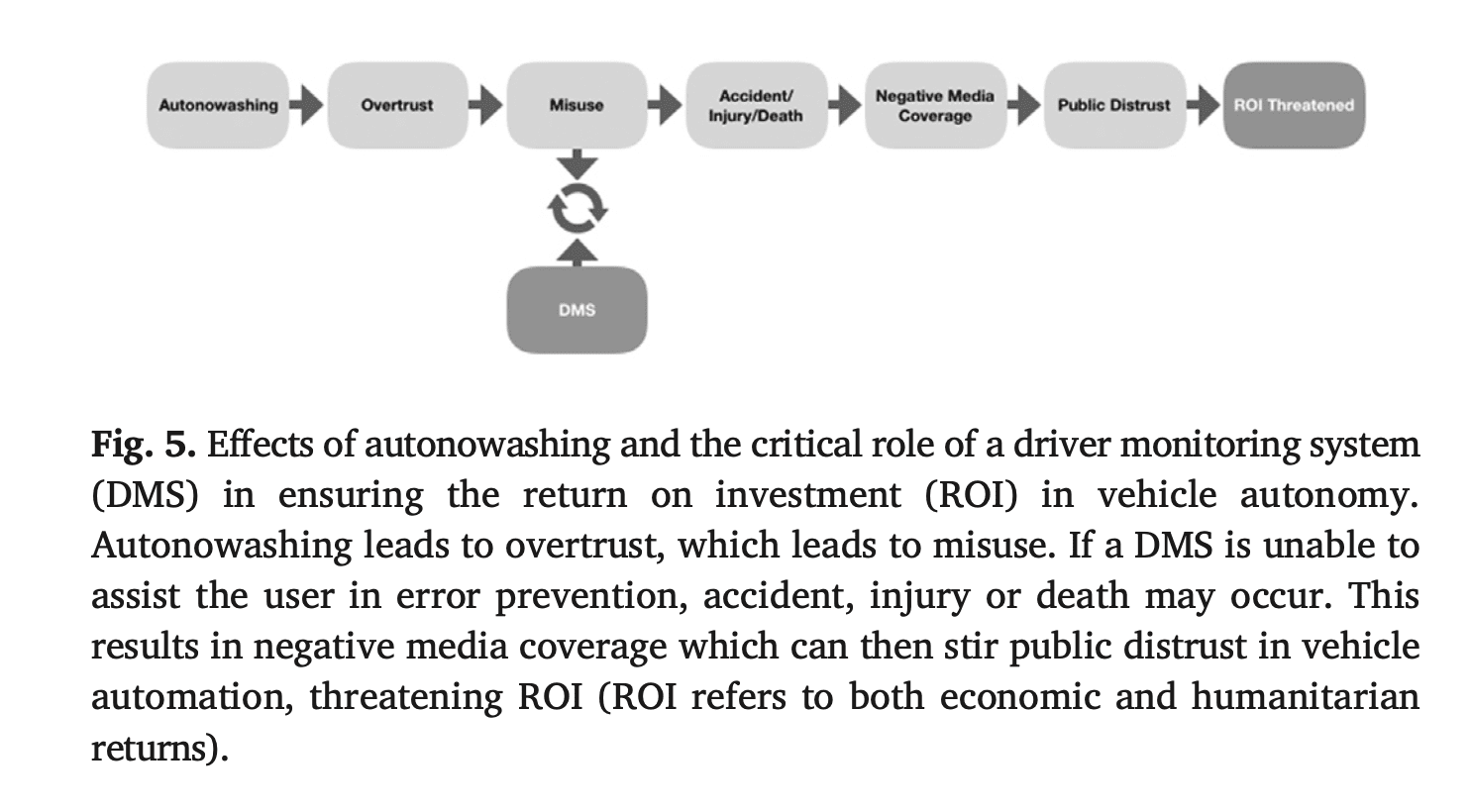 roi, outcomes, autonowashing, chain