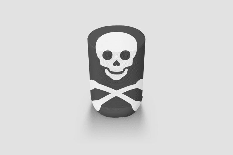 sonos move pirate flag