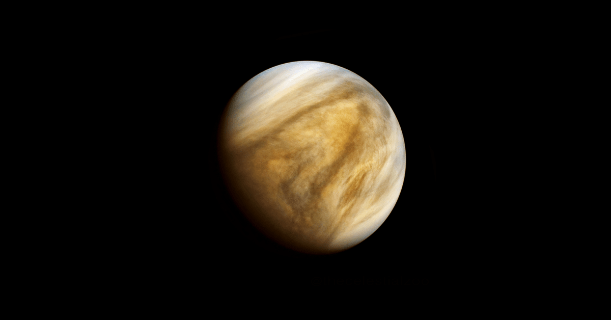 Can there be life on Venus? Here's what scientists are doing to find out