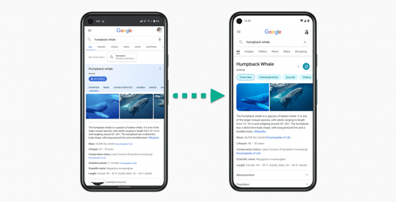 Google Search has a new mobile design — come spot the differences