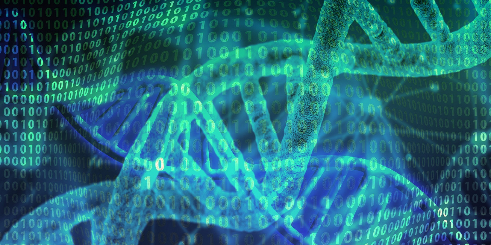 Researchers are looking into DNA data storage.
