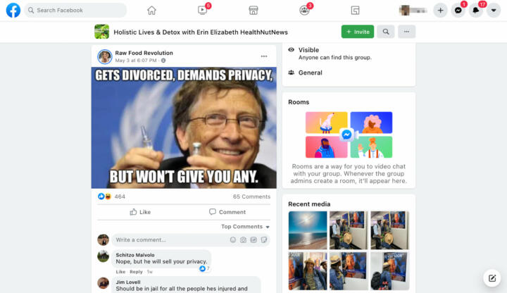 """Erin Elizabeth often posted about Bill Gates in her """"Holistic Lives"""" group."""