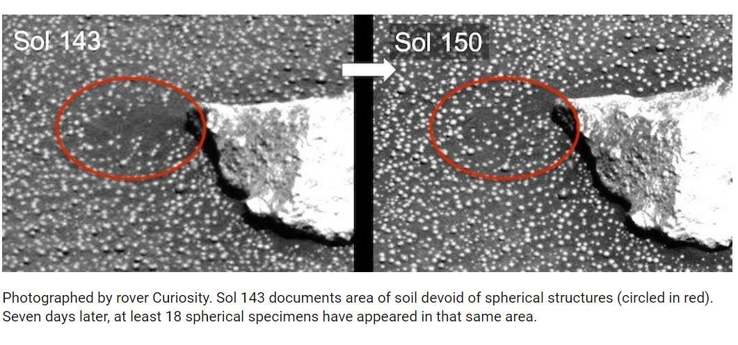 Mushrooms on Mars is a hoax — stop believing hack 'scientists'
