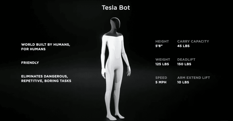 Basic specifications of a Tesla bot