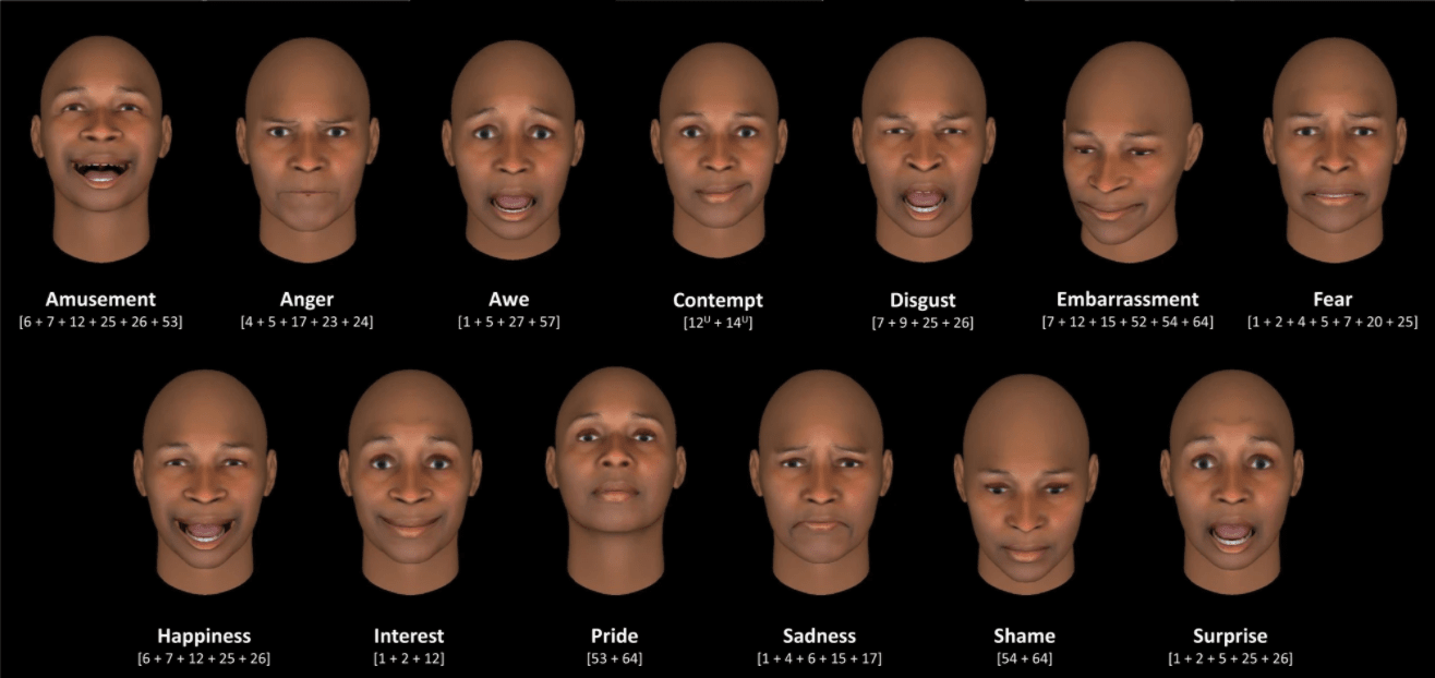 The researchers used the Facial Action Coding System, which specifies a set of action units that each represent the movement of one or more facial muscles.