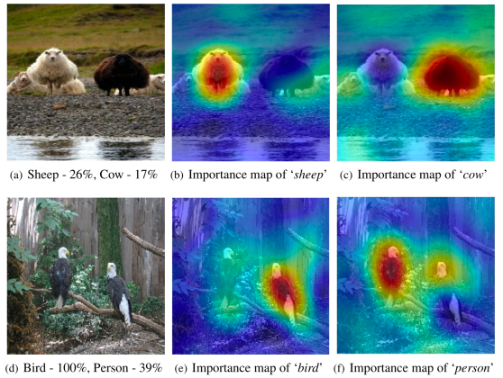 Examples of saliency maps produced