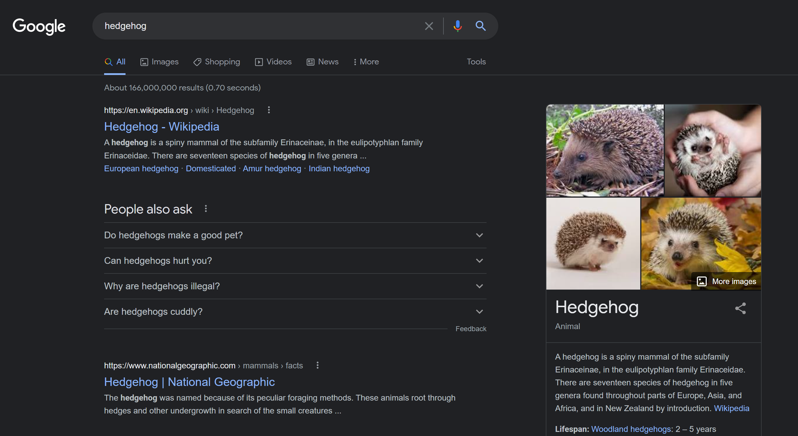 Google Search finally has a dark mode — here's how to turn it on